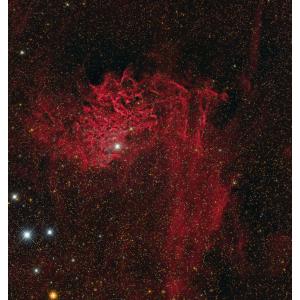 IC 405: John Bozeman