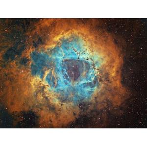 Rosette Nebula: Terry Hancock
